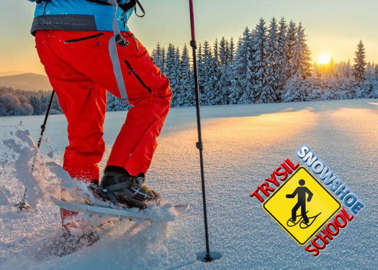 Learn how to use snowshoes